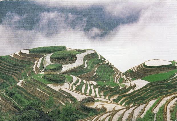 unesco-gforpcrossing china - cultural