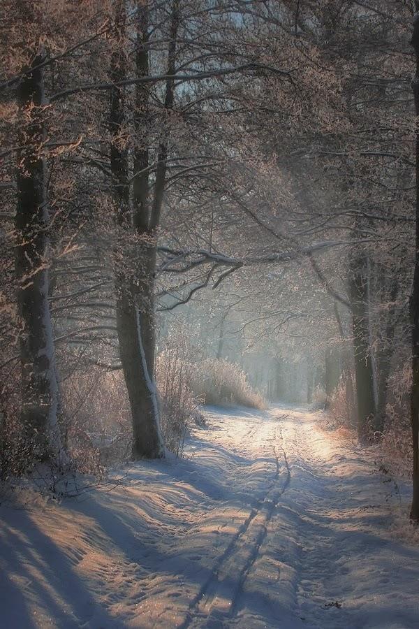 Δρόμος μακρύς εἰναι η ζωή...