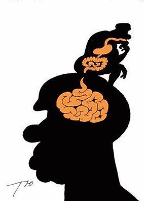 cervel