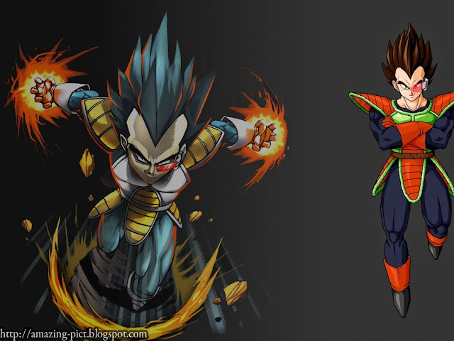 Vegeta dragon ballz wallpapers amazing picture - Dragon ball z majin vegeta wallpaper ...