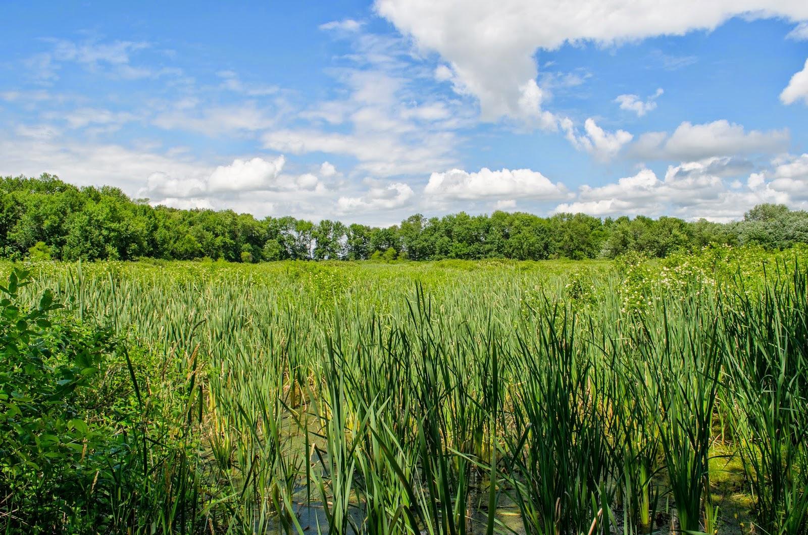 Kettle Lake Ohio