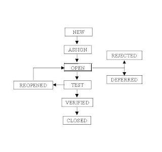 Bug-life-cycle