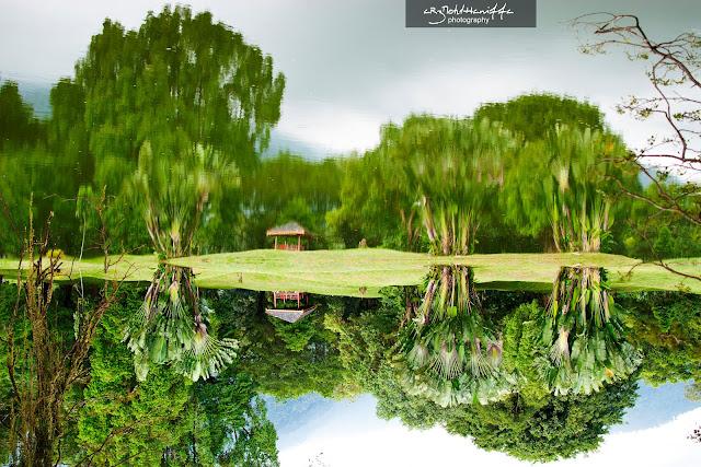 refleksi taman tasik taiping, gambar cantik, refleksi, reflection, gambar menarik di taman tasik taiping,