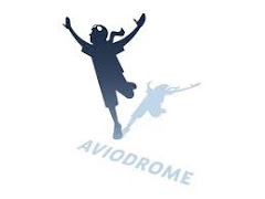 Holland for Kids: AVIODROME