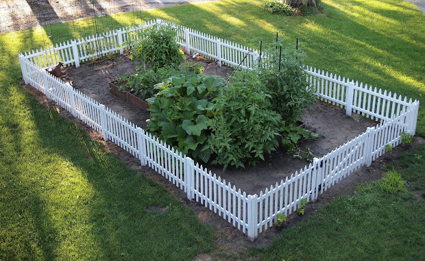 Small White Picket Fence Garden