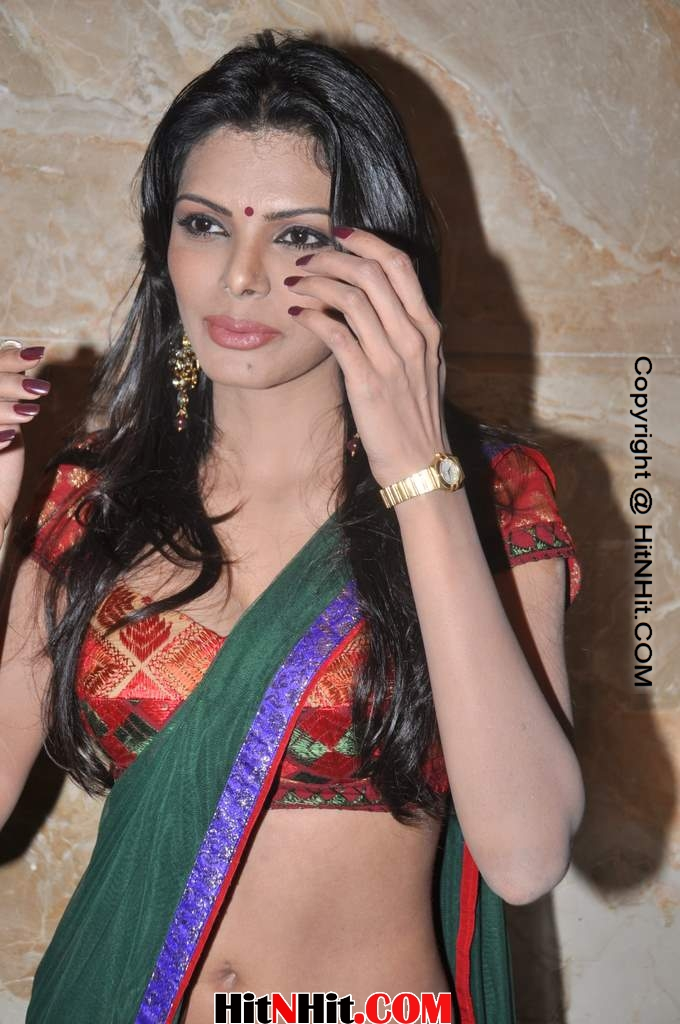 Sherlyn Chopra nude (67 photo), young Fappening, YouTube, butt 2019