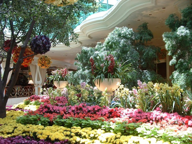 The Wynn Conservatory