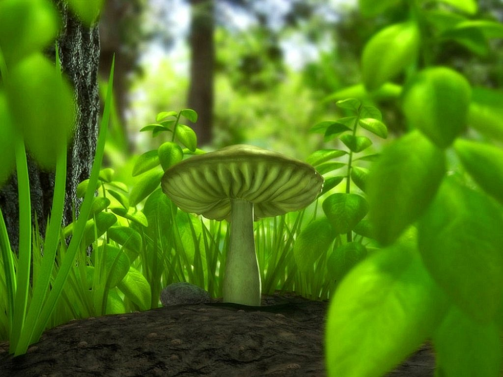 glowing mushroom wallpaper red mushroom in green wallpaper beautiful ...