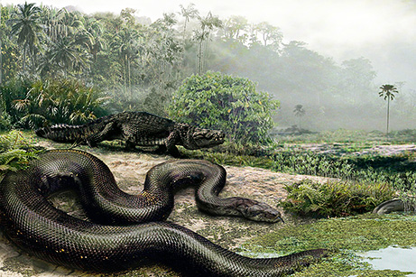 Biggest Snakes in the World-Biggest Snake in the world EverWorld Biggest Snake
