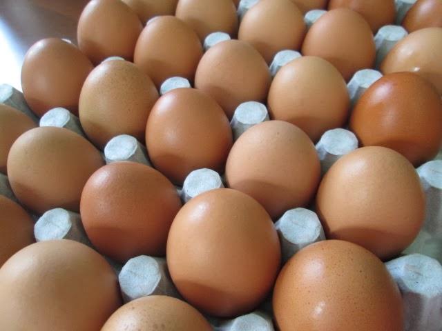 cara simpan telur ayam