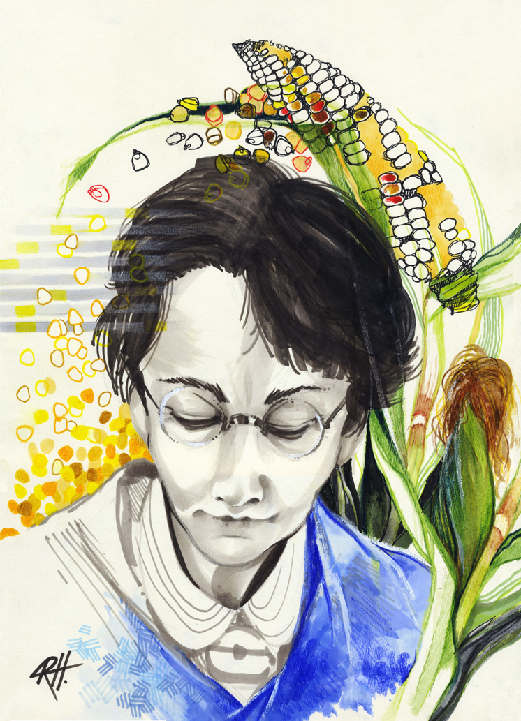 barbara mclintock Barbara mcclintock was born in hartford, conn, and grew up in brooklyn, ny she was the daughter of a doctor and, after developing a love of science in high school.