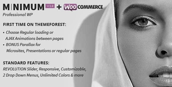 MINIMUM WordPress Theme Presented by TipTechNews