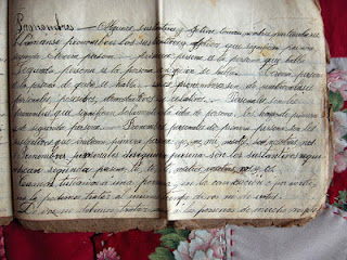 Turn of the century handwritten journal