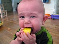 Ayvayı Yemek, Limon Ekşi Tatmak
