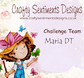 Crafty Sentiment Designer Challenge