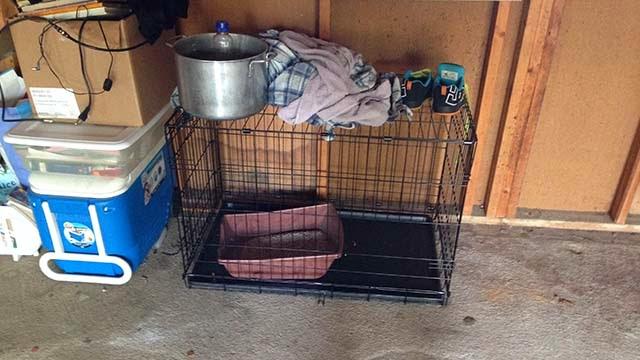 κλουβι σκυλου