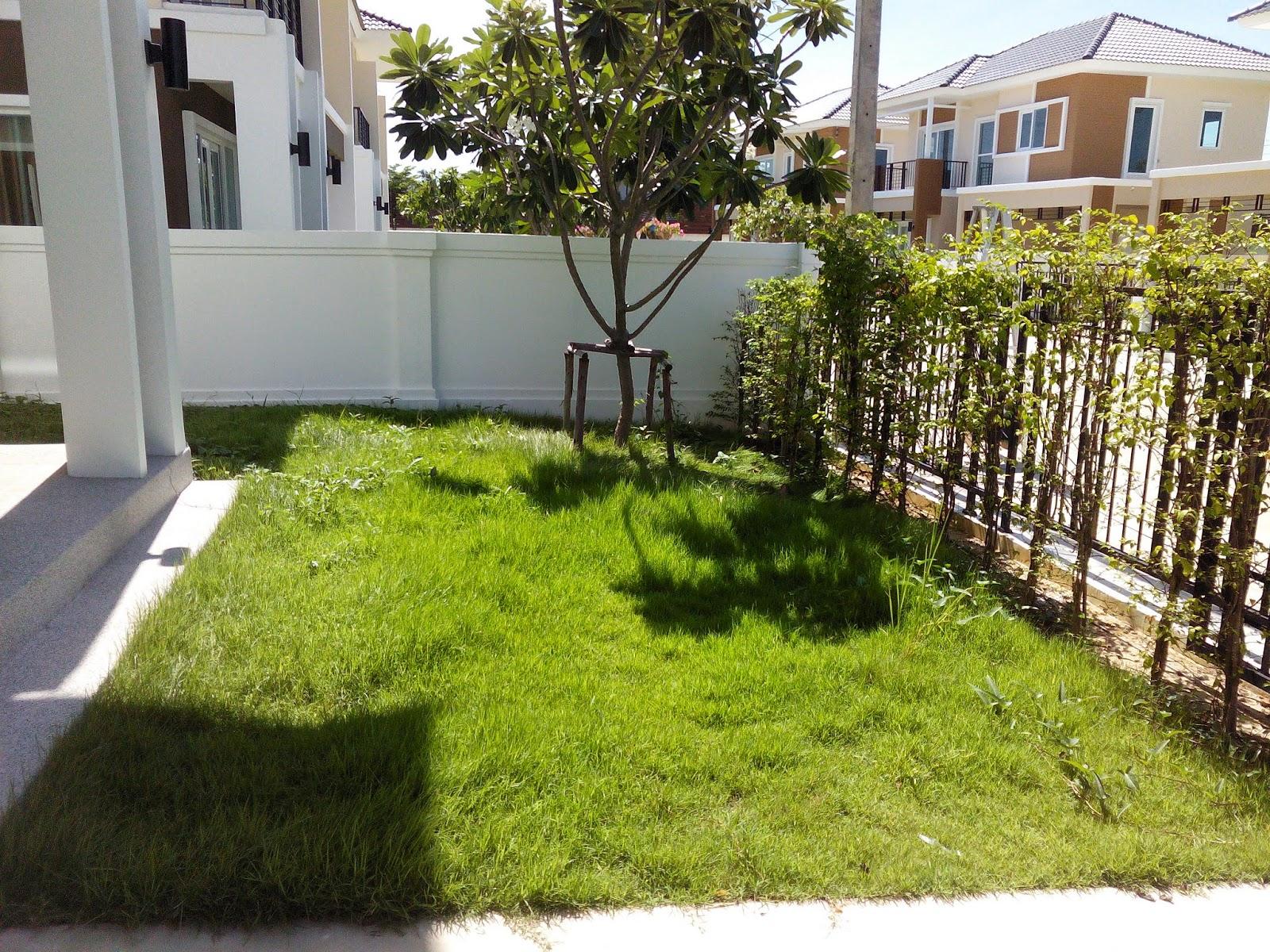 http://gardenone.blogspot.com/2012/12/blog-post_9.html