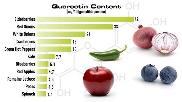 ケルセチン含量の高い食物
