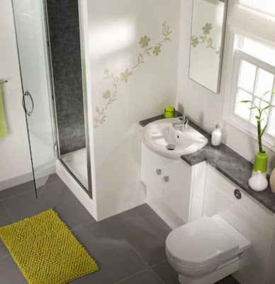 Budgets for Bathroom Remodeling Ideas