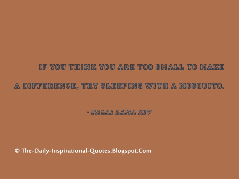 If you think you are too small to make a difference, try sleeping with a mosquito. - Dalai Lama XIV