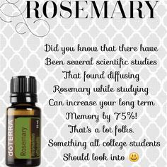 doTerra Featuring Rosemary and the Benefits of Essential Oil Products. CLICK Pic for Catalog