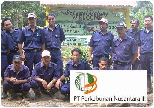 Lowongan perkebunan nusantara 2015, Info kerja BUMN PTPN 3, Peluang kerja BUMN 2015