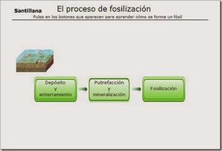 http://www.e-vocacion.es/files/html/238095/recursos/libro_alumno/Recursos/238095_P098_1/visor.html