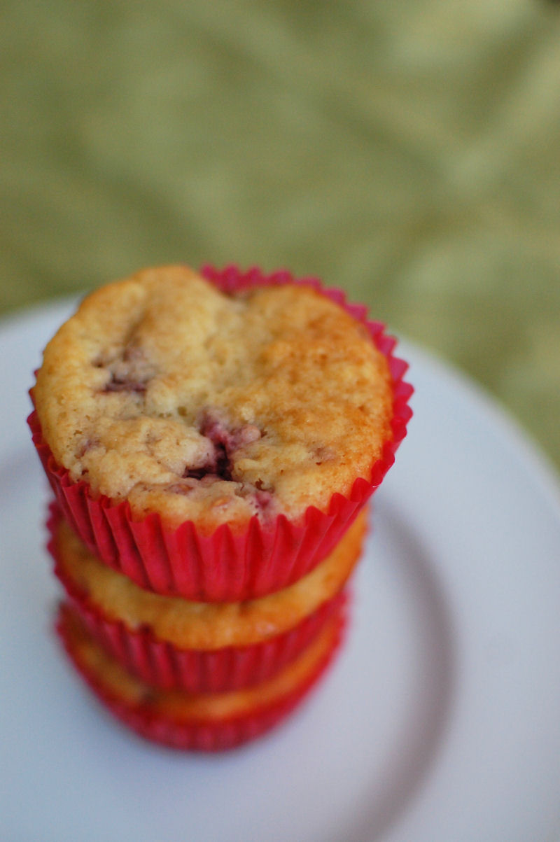 Raspberry Rhubarb Muffins | Beantown Baker