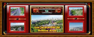 Los jacarandás de Buenos Aires