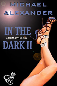 In The Dark II (A BDSM Anthology)