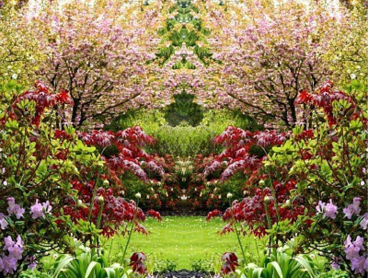 Frases del alma el jard n for O jardin secret suresnes