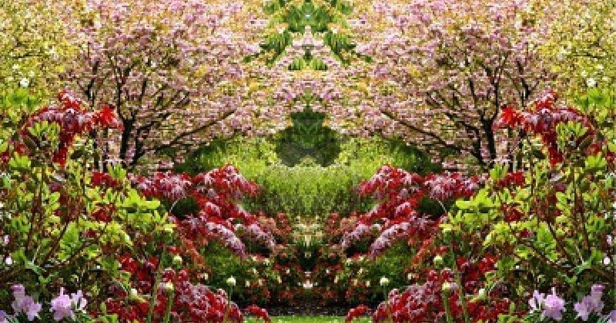Frases del alma el jard n for Cancion secretos en el jardin