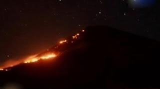 Kawasan Hutan Gunung Sindoro Kebakaran