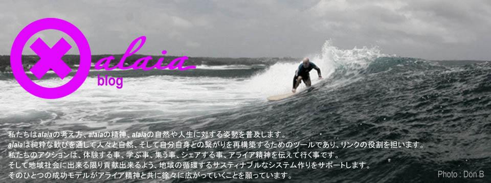 xalaia, Alaia surfboards design, アライアサーフボード