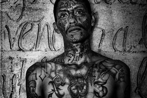 mara+salvatrucha+ms-13.jpg