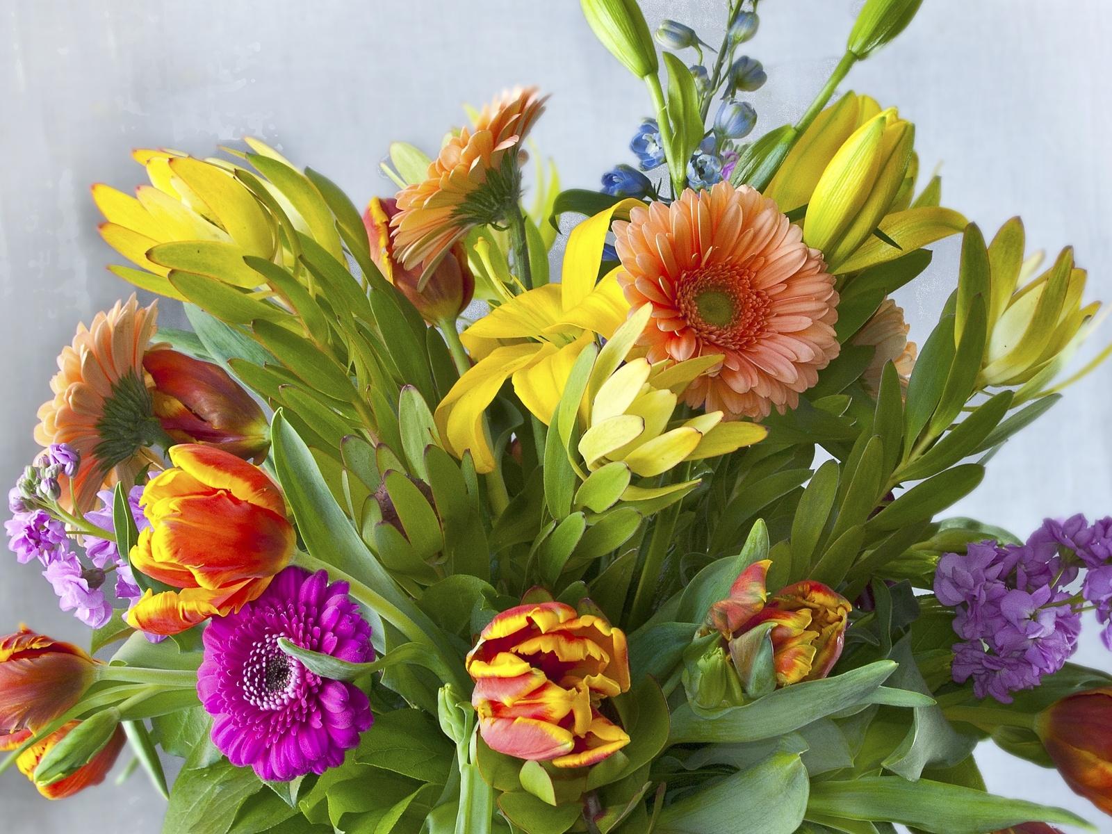 Rosas para flores cortadas de ramos rosales modernos - Ramos de flores modernos ...