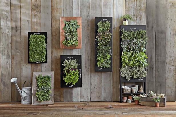 Crespi italian garden il blog vuoi un giardino verticale - Giardino verticale interno ...
