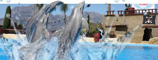 Mundomar Dolphin Show