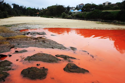 aguas se vuelven sangre en australia