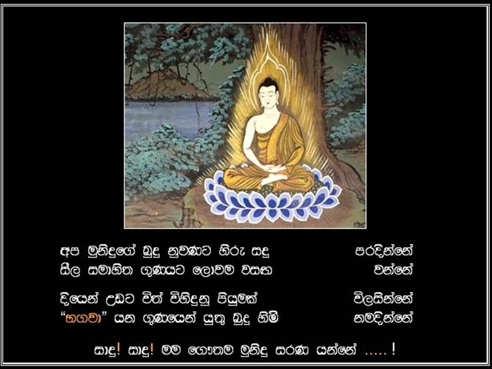 Janith Shirantha Blog