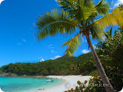 Denis Bay Beach (denis bay beach on st john usvi pa )