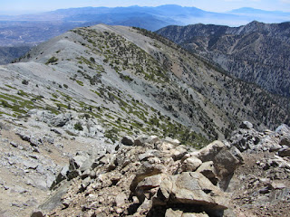 View east toward Mt. Harwood and Register Ridge from the rim of Baldy Bowl