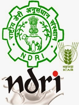 National Dairy Research Institute NDRI Vacancy 2014