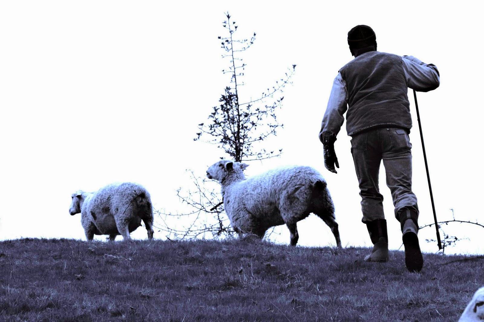 Farming and Art