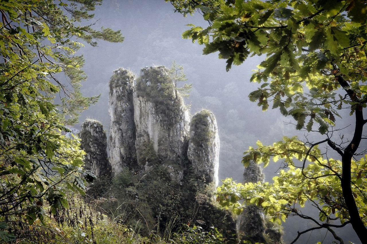 skała wapienna Rękawica koło Jaskini Ciemnej w Ojcowie