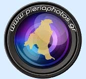 pieriaphotos