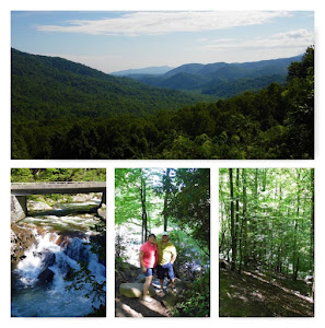 Some views of the Great Smokey Mountains National Park