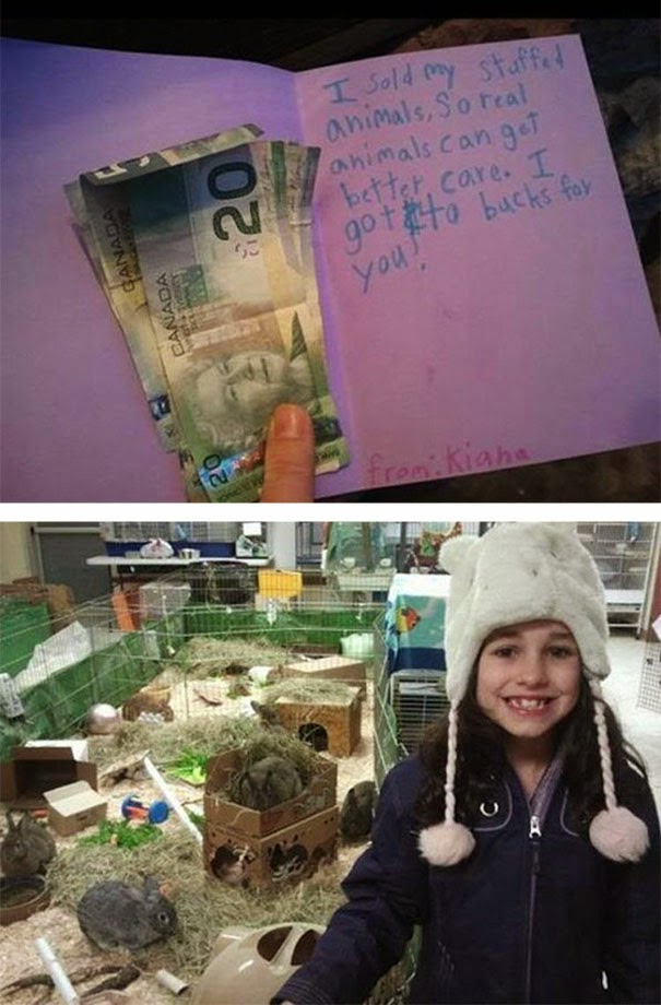 20+ Photos That Will Restore Your Faith In Humanity - Girl Sells Her Stuffed Animals And Donates The Money To A Local Animal Shelter