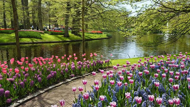 Nature Flower park