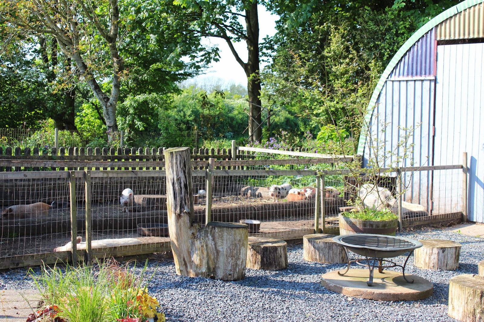 Anettesflora: velkommen til blomstertøsens have i bording, første del